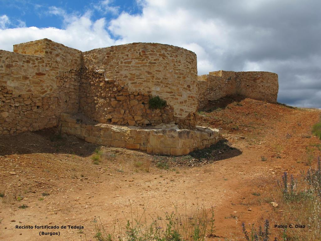 II Jornadas Arqueologia Medieval_Tedeja_Pablo C_Diaz Martinez